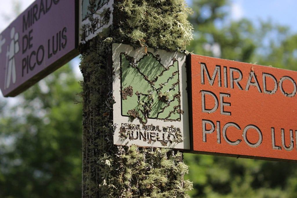 Indicadores del Bosque de Muniellos, una joya natural en Fuentes del Narcea