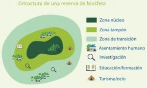 Estructura de una Reserva de la Biosfera.