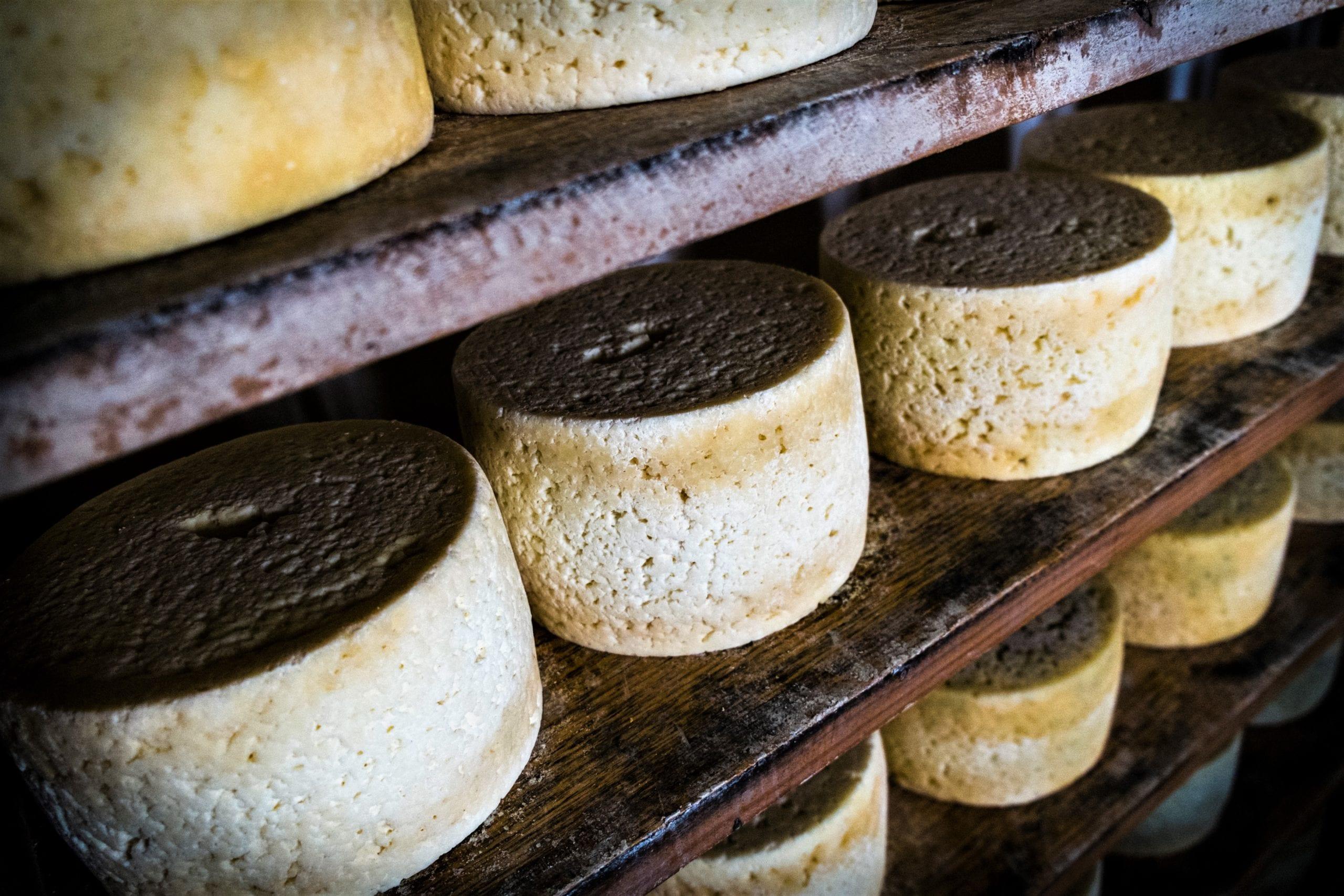 El queso Cabrales