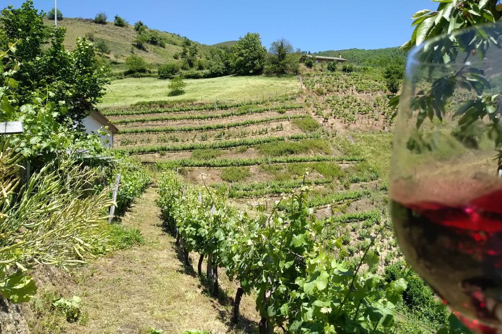 Viaje gastronómico en Asturias