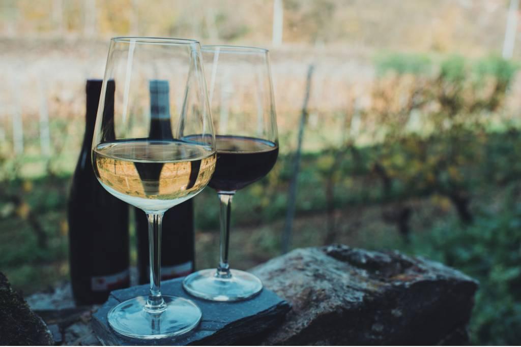 Vinos de Cangas DOP, vinos de Asturias