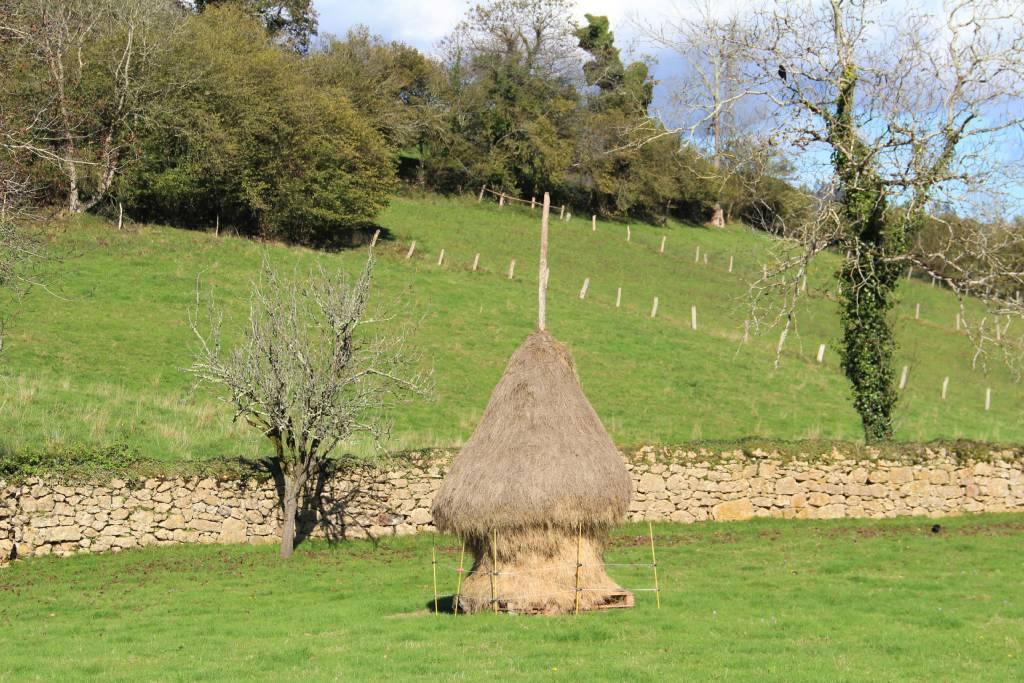 que-ver-en-asturias-vara-hierba-valagar-praos-ganaderia-asturias-tradiciones