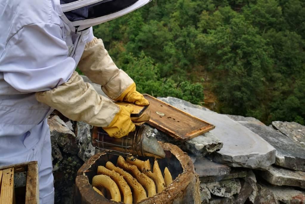Experiencia agroturismo Asturias