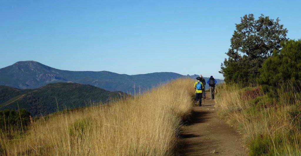 Camino Primitivo a Santiago