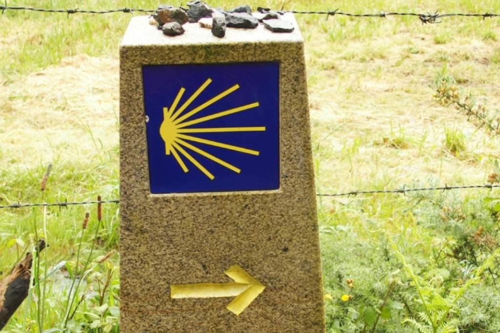 Concha del peregrino en Galicia